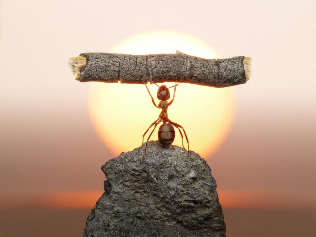 Притча о взгляде на трудности в жизни